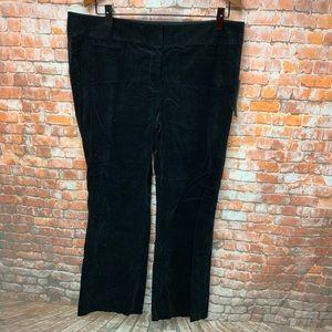 "LOFT Women's Pants size 18 Velvet ""Marisa"" # L213"